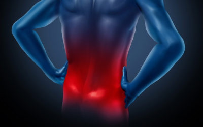 Suffering from Back Pain without any relief?